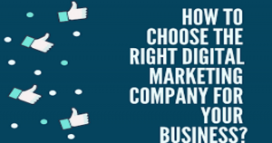 Choose the best digital marketing company